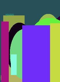 viagra visa electron