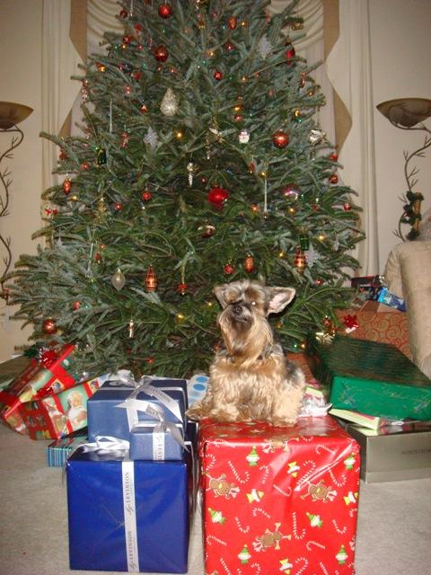 christmas-2007-093.jpg